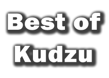 kudzu Denver Movers